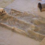 fragment ekspozycji (rekonstrukcja pochówku szkieletowego)